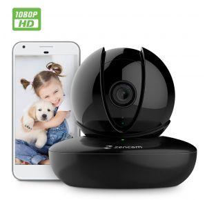 Zencam PT 1080p